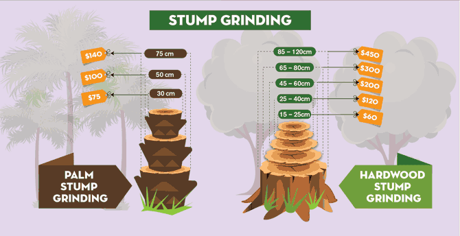 tree stump removal cost infographic