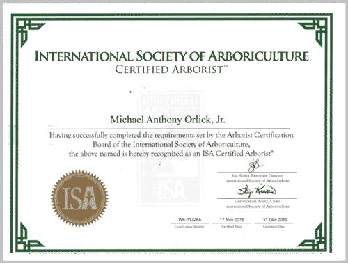Arboriculture Certificate Melbourne