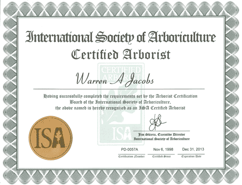 Arboriculture certificate 3 central coast NSW