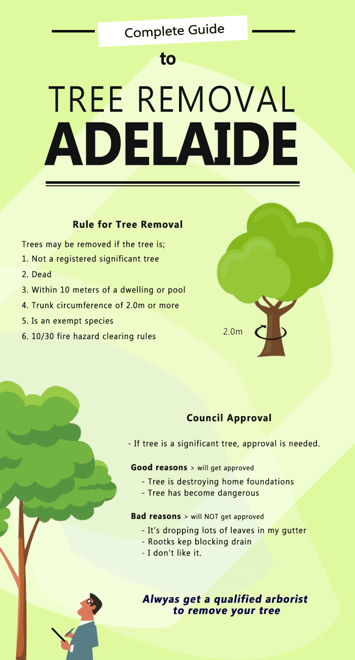 Tree Removal Adelaide infographic