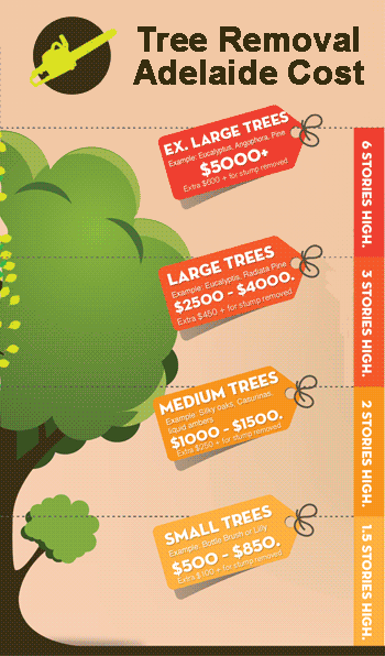 infographic with prices for tree lopping in Adelaide SA