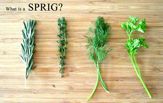 Types of Sprigs