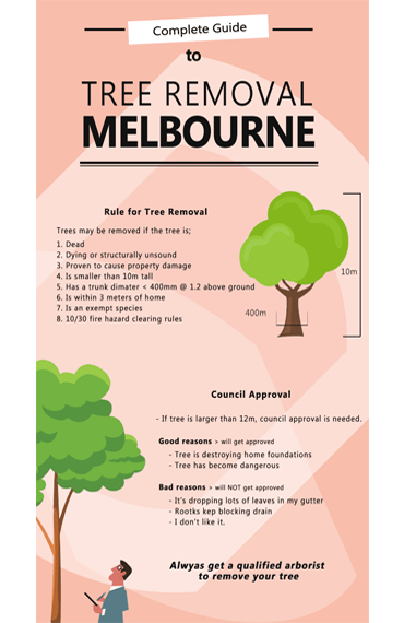 Cheap Tree Removal Melbourne Compare Quotes Save Gt 43