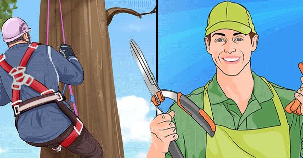 arborist-vs-gardener