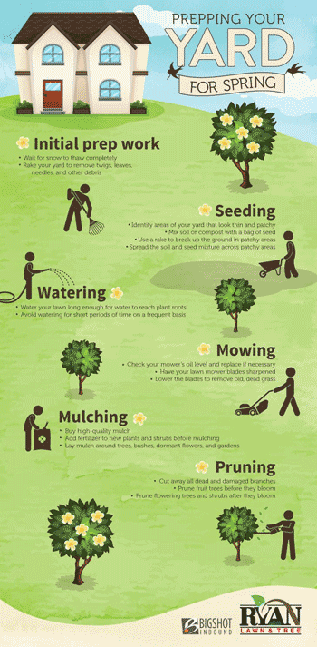 lawn care facts