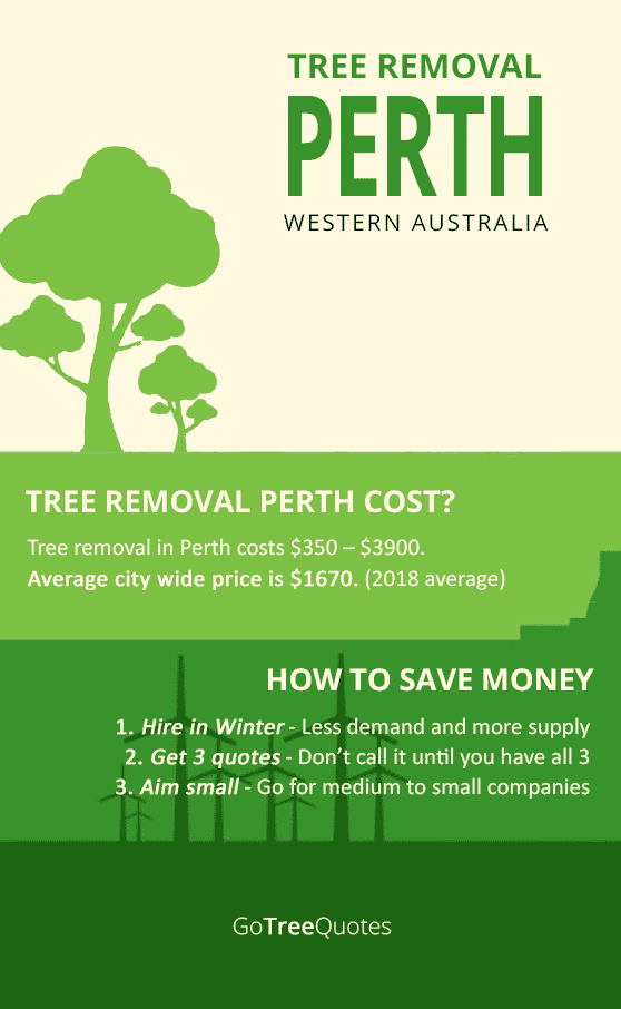 tree-removal-perth-cost-infographic