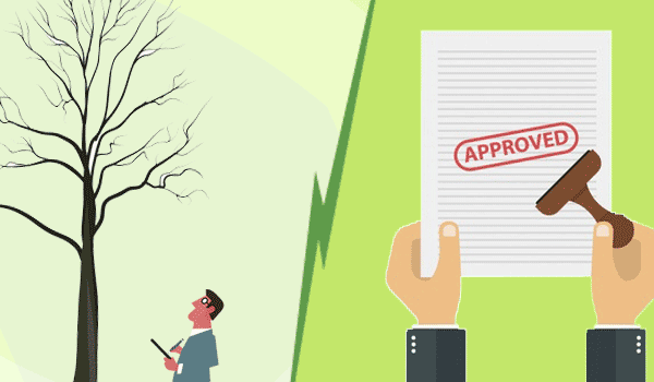 approval for dead tree removal