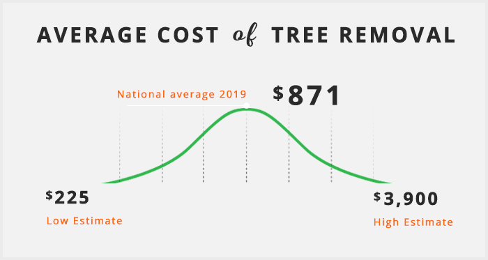 average-cost-of-tree-removal2