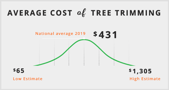 average-cost-of-tree-trimming-infographic