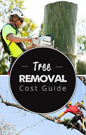 TREE-REMOVAL-COST-side-panel