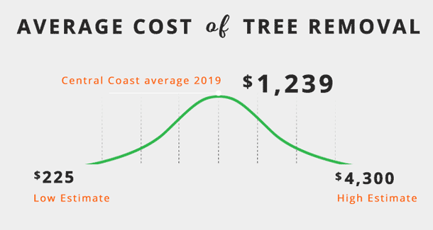 average-cost-of-tree-removal-central-coastNSW