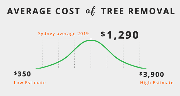 average-cost-of-tree-removal-sydney-2020