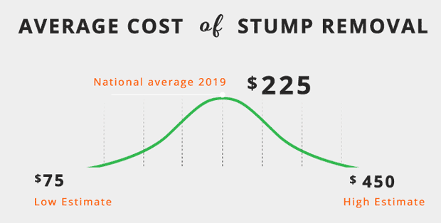 average-cost-of-tree-stump-removal