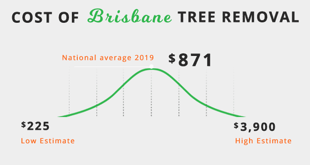 cost-of-tree-removal-in-brisbane-QLD-infographic
