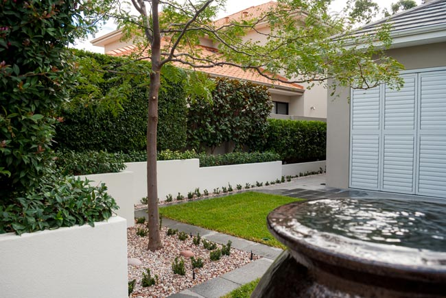 when-you-need-an-arborist-in-perth