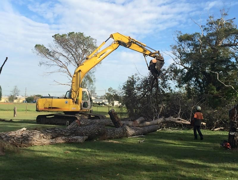 tree-removal-cessnock-council-an-excavator2
