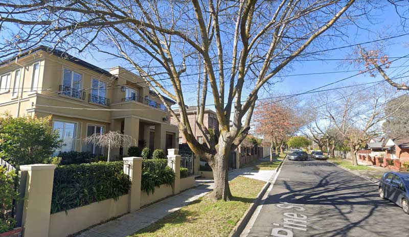 street-tree-overhanging-private-property-Melbourne-VIC