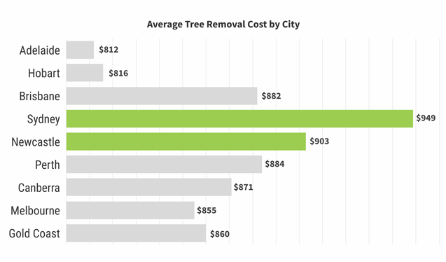 Cost of tree removal by city